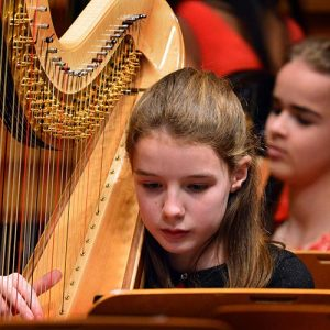 NYHO--Young-harp-player-in-concert