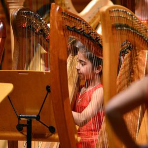 NYHO--Young-harp-player-in-concert2